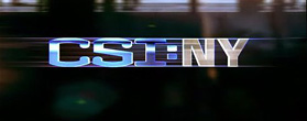CSI:NY/CSI:ニューヨーク