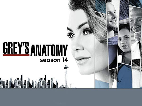 グレイズ・アナトミー/Grey's Anatomy シーズン14