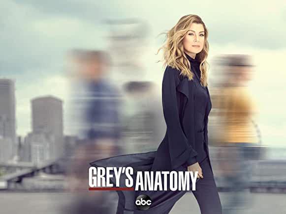 グレイズ・アナトミー/Grey's Anatomy シーズン16