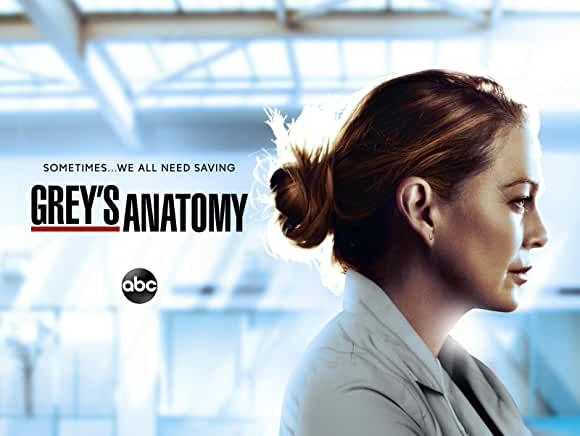 グレイズ・アナトミー/Grey's Anatomy シーズン17