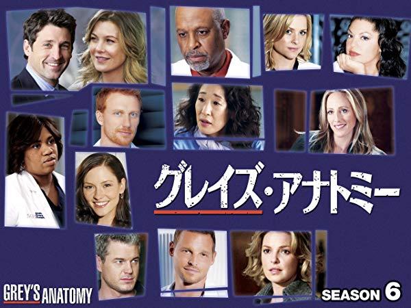 グレイズ・アナトミー/Grey's Anatomy シーズン6