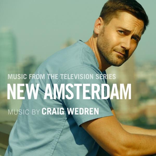 Looked Up To You - Craig Wedren